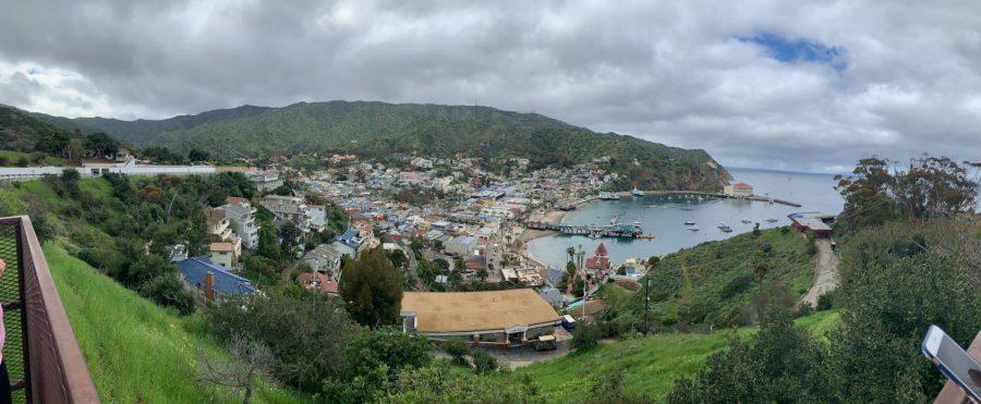 Trip+to+Catalina+Island