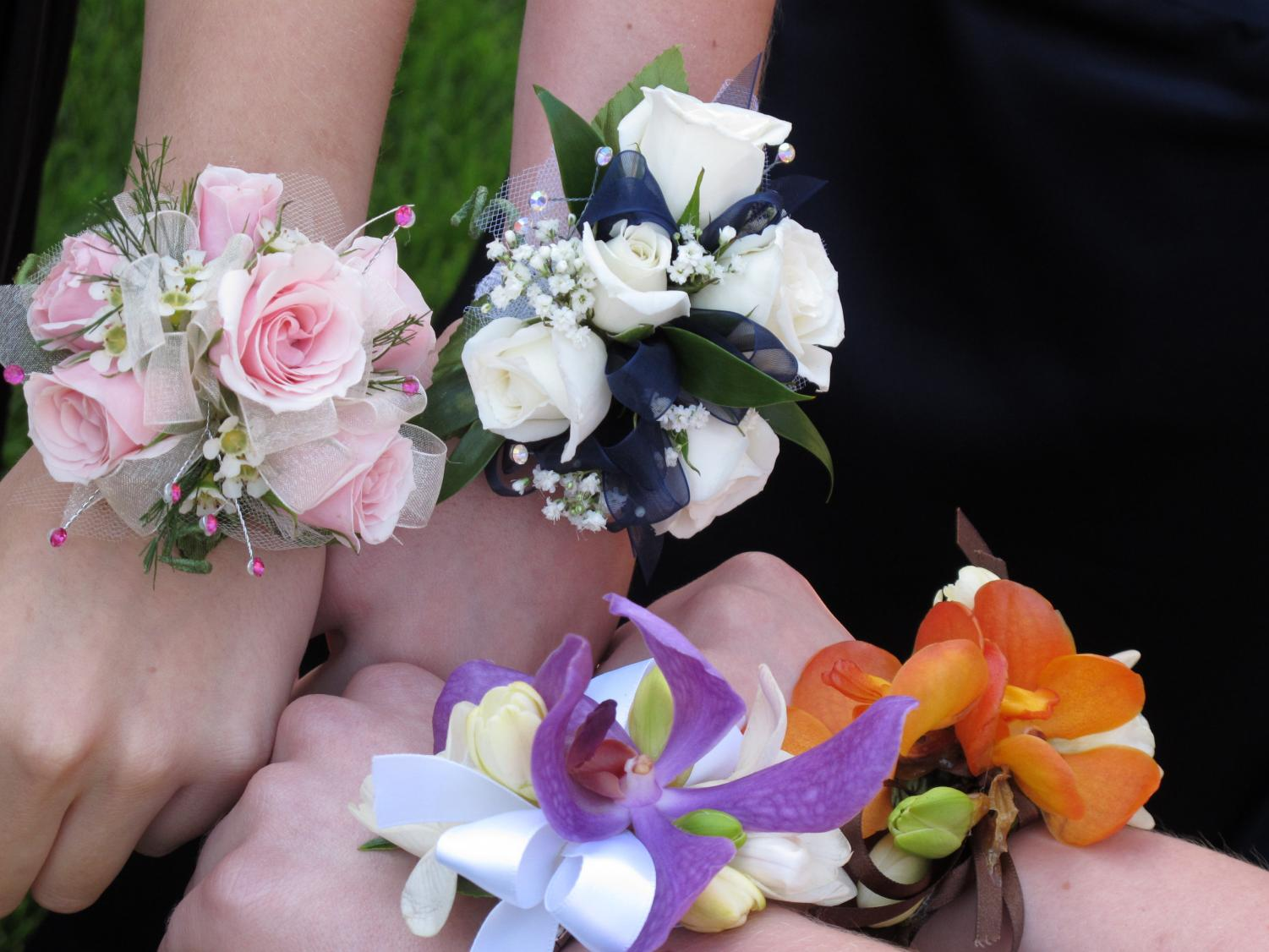Photo via Wikimedia Commons under Creative Commons license.