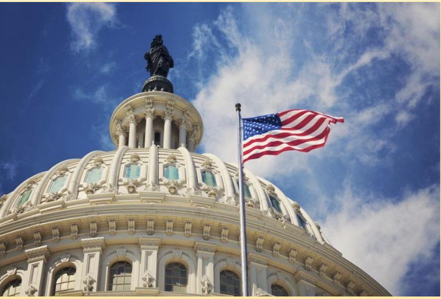 Who's on the Ballot: US Representative, IL 10th Congressional District