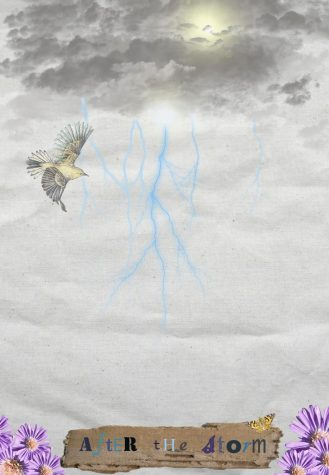 "Leslie Lopez - ""After the Storm"""