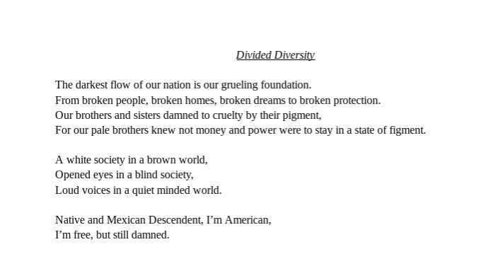 "Jazmin Farias - ""Divided Diversity"""