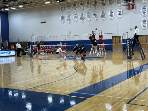 Live it, Love it, Volleyball is back!